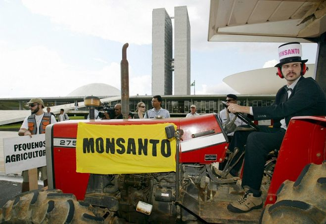 La Monsanto davanti al Tribunale internazionale dell'Aia. VIDEO